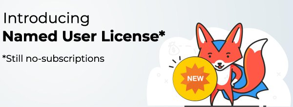 Introducing Named User Licenses in DashboardFox (Making BI Even More Affordable)
